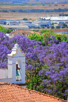 Évora - Portugal (by - Adam Reeder -)