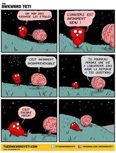 Heart vs Brain illustrations by The Awkward Yeti aka Nick Seluk Background Cool, Heart And Brain Comic, The Awkward Yeti, Akward Yeti, Look At The Stars, Star Art, Heart And Mind, Bored Panda, Illustrations