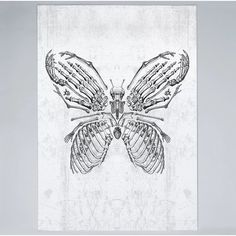 Butterfly Bones Graphic Art on Wrapped Canvas Americanflat Size: 60 cm H x 40 cm W x 5 cm D Skull Reference, Painting Prints, Art Prints, Bone Tattoos, Butterfly Drawing, Character Drawing, Metal Wall Art, Wrapped Canvas, Graphic Art