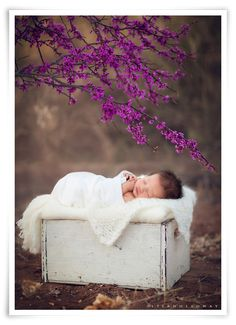Lisa Holloway of LJHolloway Photography photographs a newborn baby girl outdoors with spring flowers near Las Vegas.
