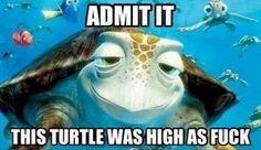 Crush in Finding Nemo. this turtle rocks lol