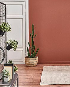Zoom on . the terracotta color Dark pink and powdery for some, ocher yellow or rust orange for others . The terracotta color is available in many sha. Living Room Decor, Bedroom Decor, Style Deco, Interior Decorating, Interior Design, Natural Home Decor, Bedroom Colors, Home Decor Inspiration, Home Decor Ideas