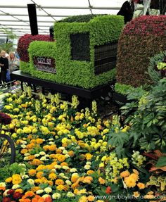 City of Birmingham flower display.  Grubby Little Faces | RHS Chelsea Flower Show – part two | http://www.grubbylittlefaces.com