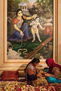 Hare Krishna devotees making flower garlands by a painting of baby Krishna inside the Sri Krishna Balaram temple (ISKCON temple) of Vrindavan, Uttar Pradesh, India. by Marji Lang