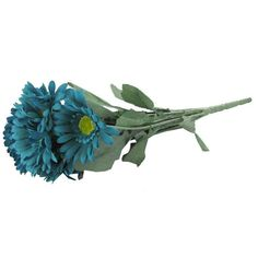 Turquoise Gerbera Daisy Bush