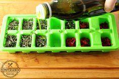 COMO CONSERVAR ERVAS FRESCAS -- Dica super útil de como conservar e armazenar ervas frescas no azeite | temperando.com #dicasdecozinha #temperos