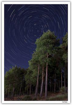 Una noche en los pinos de Piornal [dos fotos] by vitometodio, via Flickr