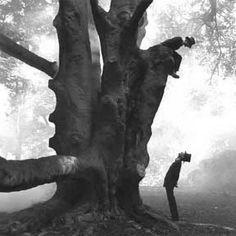 tree talk. photo by W. Eugene Smith