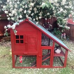 classy rabbit hutch (needs a mesh wire bottom)