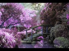 Purple Fantasy Garden Landscape Acrylic Painting Live FREE Step by Step Tutorial - YouTube