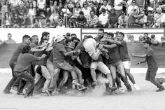 Portugal, Sumo, Wrestling, Sports, Photography, Lucha Libre, Hs Sports, Photograph, Fotografie