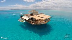 Experience Paradise On This Floating Bar In Beautiful Fiji - DesignTAXI.com