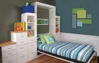 Murphy (Wall) Bed for Kids room or Play room!!!