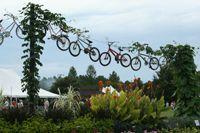 ut gardens, jackson tn, great place to get gardening ideas-wonderful summer celebration event