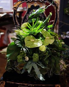 All green wedding bouquet mixing British and tropical flowers. Some Beautiful Images, Tropical Flowers, Green Wedding, Raven, Wedding Bouquets, Cool Photos, Floral Design, British, Amazing