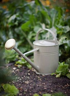 10L Watering Can  in Gooseberry