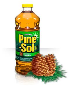 Pine-Sol – Will You Take the Challenge? (G!veaway – Canada)