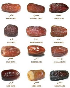 Welcome to the Liwa Dates Deglet Nour, Fresh Dates, Pinterest Recipes, Pinterest Food, Food Vocabulary, Date Recipes, Nutrition, Cooking Recipes, Healthy Recipes