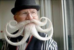beards and mustachios  a movember hair  DO!