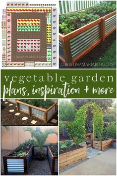 Talking about lessons from our vegetable garden – plans for the future, and inspiration as we build and design this summer's garden. LOTS of ideas in this post - you won't want to miss it!