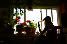There are always thousands of things to do. by The Noisy Plume, via Flickr