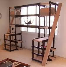 Image result for pvc pipe cat tree diy