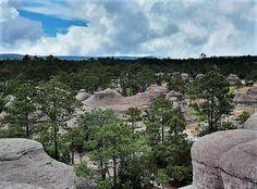 Jardín de Piedras, Mexiquillo, Durango Maya, Mountains, Nature, Travel, Rockery Garden, Gardens, Architecture, Art, Naturaleza