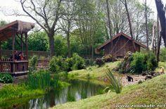 Envie d'exotisme ? Embarquez au Zoo de Champrépus