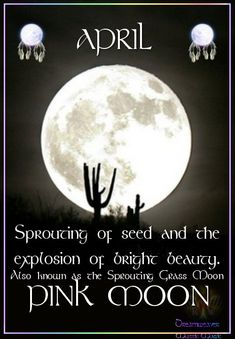 APRIL PINK MOON Sprouting of seed and the explosion of bright beauty. Also known as the Sprouting Grass Moon