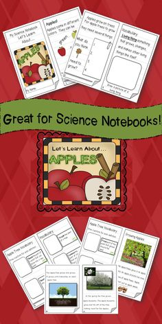 Are you teaching an apple thematic unit? This science booklet is a great addition! Includes 15 student pages with vocabulary, writing, and real life photographs. $
