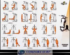 Multi Gym Workouts | Image Result For Back Exercises For The Multi Gym Exercises