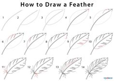How to Draw a Feather (Step by Step Pictures) Feather Drawing, Butterfly Drawing, Feather Painting, Feather Art, Cute Flower Drawing, Doodle Drawings, Easy Drawings, Doodle Art, Pencil Drawings