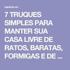 """7 TRUQUES SIMPLES PARA MANTER SUA CASA LIVRE DE RATOS, BARATAS, FORMIGAS E DE OUTROS """"BICHINHOS"""" INDESEJADOS!"""