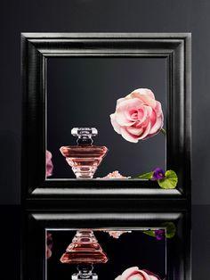 ∴ Lancome Trésor Eau de Parfum Lumineuse ~ via @fragrantica