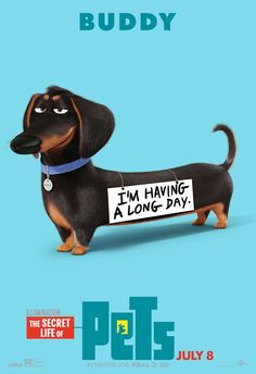 Buddy - The Secret Life of Pets Dachshund Dog 2016 Movie Silk Poster Dachshund Funny, Dachshund Art, Daschund, Funny Dogs, I Love Dogs, Puppy Love, Cute Dogs, Pets Movie, Cute Names