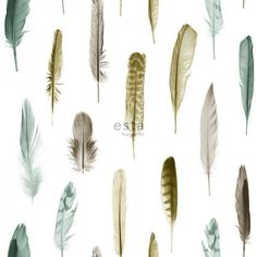 Transform rooms into a bohemian retreat with this whimsical wallpaper. Turquoise, navy and slate feathers effortlessly complement a white backdrop. Nala is an unpasted, non woven wallpaper. Modern Wallpaper, Photo Wallpaper, Wallpaper Roll, Designer Wallpaper, Beige Wallpaper, Turquoise Wallpaper, Feather Wallpaper, Home Greenhouse, White Backdrop