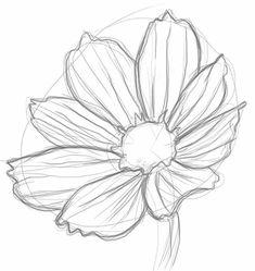 Flower art, daisy flower drawing, realistic flower drawing, line art Daisy Flower Drawing, Realistic Flower Drawing, Simple Flower Drawing, Beautiful Flower Drawings, Flower Drawing Tutorials, Flower Line Drawings, Flower Sketches, 3d Drawings, Colorful Drawings