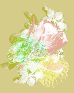 Contemporary photography and artwork Mauren Brodbeck Loyalland, Untitled 13 Contemporary Photography, Contemporary Art, Filmmaking, Artist, Artwork, Flowers, Color, Cinema, Work Of Art