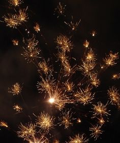 A photo @Anita Lillie took of fireworks that looks like something underwater, or something microscopic