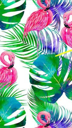 Flamingo Wallpaper, Flamingo Art, Summer Wallpaper, Rose Wallpaper, Cute Wallpaper Backgrounds, Pastel Wallpaper, Cute Wallpapers, Apple Logo Wallpaper Iphone, Wallpaper Iphone Disney