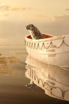 Enlace permSubido de Pinterest http://www.isladelecturas.es/index.php/noticias/libros/835-las-aventuras-de-indiana-juana-de-jaime-fuster A la venta en AMAZON. Feliz lectura. anente de imagen incrustada