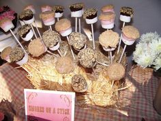 Love the tiny hay bail idea for cake pop/ s'more pops display:)