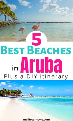Wondering where to visit in Aruba and the best beaches to soak i the sun on? Look no further here is a list of the top best beaches in Aruba that you definitely need to visit. Plus checkout this Aruba DIY itinerary to make the most of your vacation. Best Beach In Aruba, Beach Fun, Beach Trip, Beach Vacations, Beach Travel, Best Beaches To Visit, Cool Places To Visit, Family Vacation Destinations, Travel Destinations