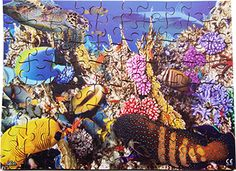 A #stunning jigsaw #exploring under our #seas. A lot to see and a lot to learn. Comes #complete with #teachers notes. #education #wooden #madeinbritain #Educational #Business #familybusiness #Family #wooden #British #Handmade #Children #gifts #toys #Christmas #jigsaw #puzzles #children #parenting #parents #childhood #animals #wildlife #animalkingdom #sights #views #british #england #derby #madeinengland #madeinbritain