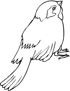 Click To See Printable Version Of Sparrow 16 Coloring Page