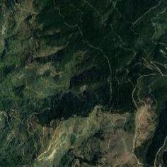 Ταΰγετος, Πετρόστρουγκες, Κορφοβούνι, Γραμμένη Πέτρα. trail - Alagonía, Peloponnese (Greece) Πεζοπορία μέσα από την αντιπυρική ζώνη προς την Γραμμένη Πέτρα 17