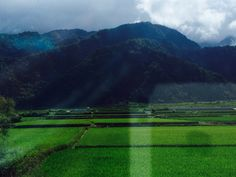 The fields and mountains of Hualien.  Oh! And there's my phone!