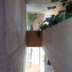 minimalist-villa_040