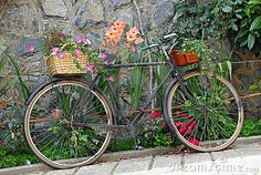 Old bicycle decorated with flowers by Jolin, via Dreamstime