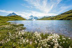 Bachalpsee Lake